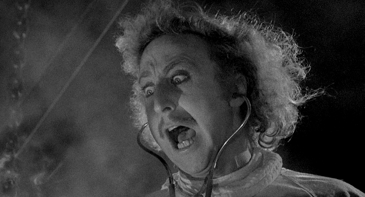 Image result for young frankenstein
