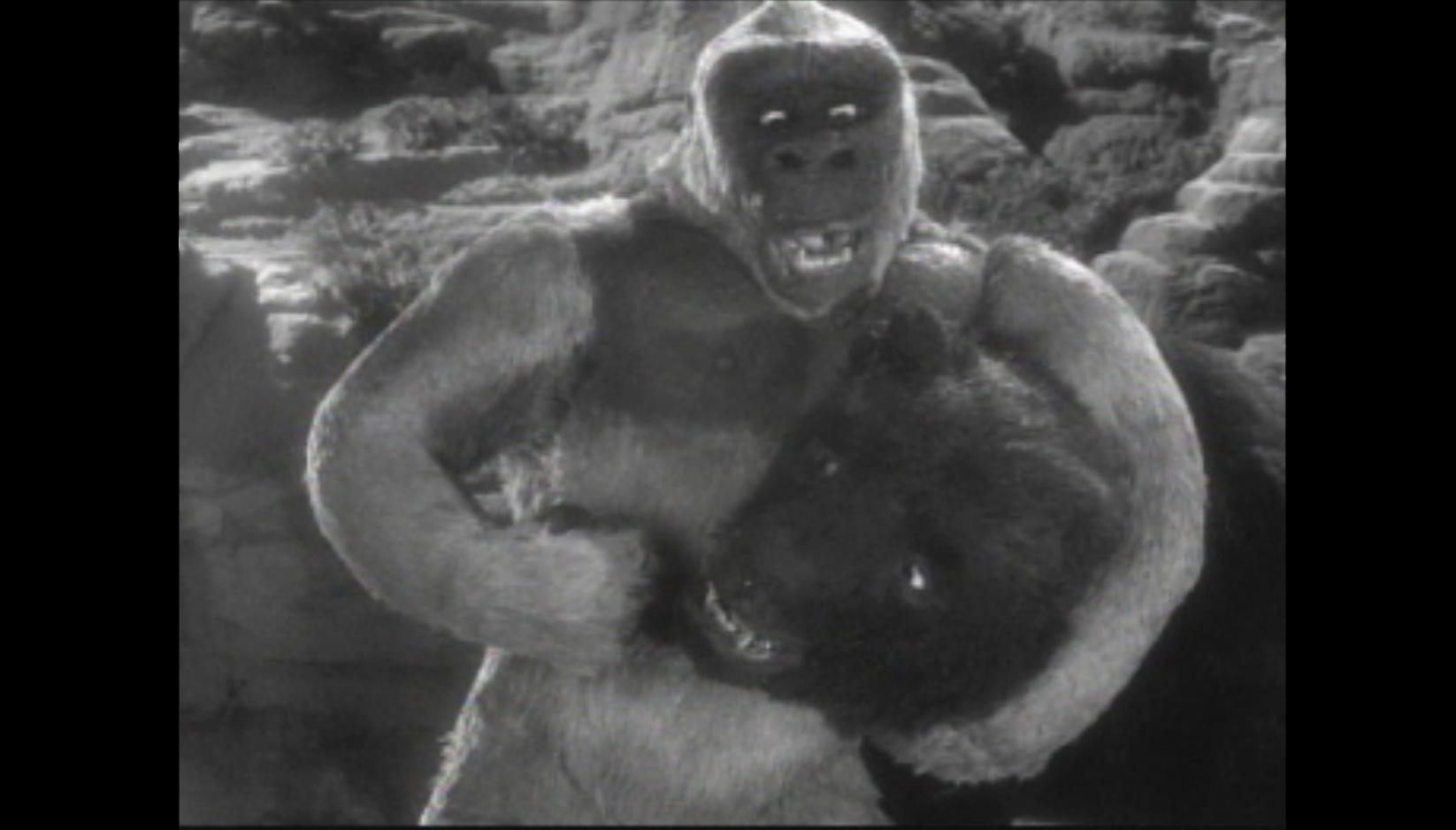 Son Of Kong 1933 Cinemassacre Productions